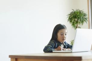 ノートパソコンの画面を見る女の子の写真素材 [FYI04863896]