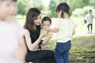 公園でどんぐり拾いをする子供たちの写真素材 [FYI04863910]