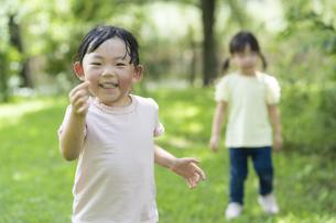 公園でどんぐり拾いをする子供たちの写真素材 [FYI04863949]