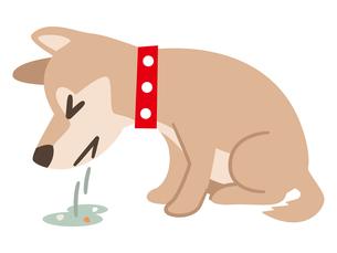 嘔吐した犬のイラスト素材 [FYI04863975]