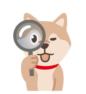 虫眼鏡を覗く犬のイラスト素材 [FYI04864010]