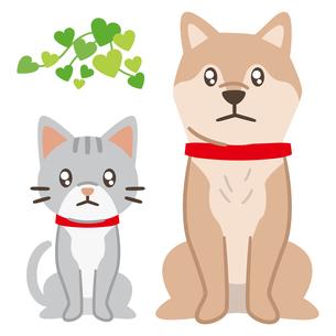 悲しい目で見つめる犬と猫のイラスト素材 [FYI04864012]