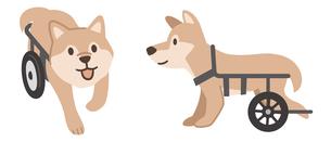 犬用車椅子のイラスト素材 [FYI04864013]
