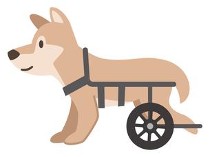 犬用車椅子のイラスト素材 [FYI04864016]