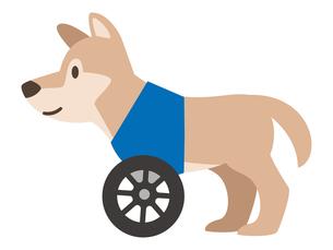 犬用車椅子のイラスト素材 [FYI04864017]
