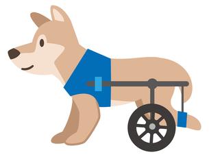 犬用車椅子のイラスト素材 [FYI04864018]