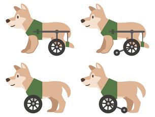 犬用車椅子のイラスト素材 [FYI04864019]