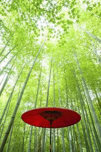 新緑の竹林に置かれた赤い番傘の写真素材 [FYI04864285]