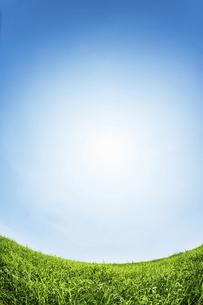 太陽と青空と新緑の草原の写真素材 [FYI04864315]