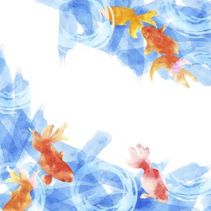 金魚の手描き水彩画のイラスト素材 [FYI04864391]