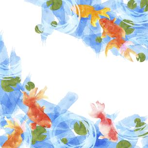 金魚の手描き水彩画のイラスト素材 [FYI04864393]