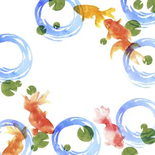 金魚の手描き水彩画のイラスト素材 [FYI04864394]