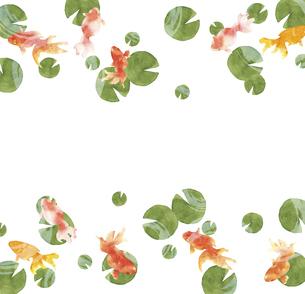 金魚とスイレンの葉の水彩画のイラスト素材 [FYI04864397]