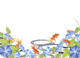 金魚と朝顔の水彩画 のイラスト素材 [FYI04864398]