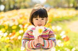 お花を持った女の子の写真素材 [FYI04864566]