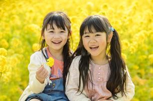 お花畑の前に座る女の子の写真素材 [FYI04864567]