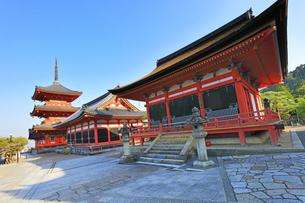世界文化遺産 京都・清水寺の三重塔に経堂と田村堂の写真素材 [FYI04864638]