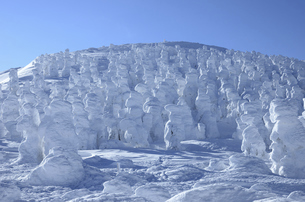 蔵王 樹氷風景の写真素材 [FYI04864799]