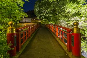 修善寺温泉 春の新緑に映える桂橋(南側から北側への風景)の写真素材 [FYI04864881]