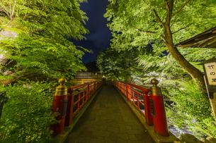 修善寺温泉 春の新緑に映える桂橋(南側から北側への風景)の写真素材 [FYI04864885]
