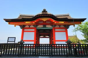 世界文化遺産 京都・清水寺の西門の写真素材 [FYI04864902]