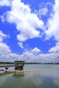 神奈川県 相模原沈殿池(横浜市水道局)の写真素材 [FYI04865001]