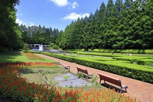 県立 相模原公園の写真素材 [FYI04865145]