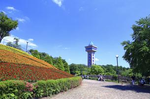 市立 相模原麻溝公園の写真素材 [FYI04865162]