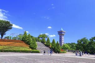 市立 相模原麻溝公園の写真素材 [FYI04865166]