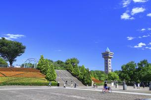 市立 相模原麻溝公園の写真素材 [FYI04865219]