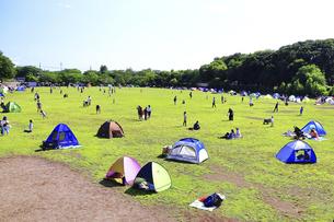 市立 相模原麻溝公園の写真素材 [FYI04865283]