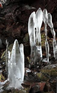 3月 大幽洞窟の氷筍の写真素材 [FYI04865324]
