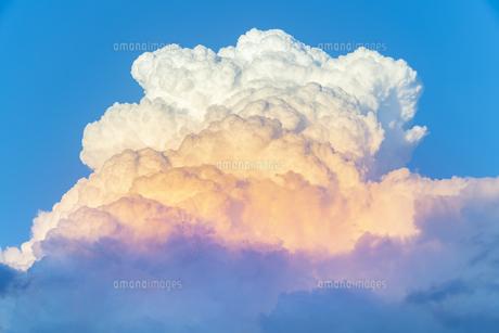 夕方の入道雲の写真素材 [FYI04865402]