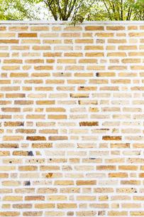 レンガ 背景 壁の写真素材 [FYI04865489]