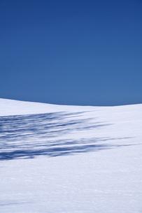 青空と雪原の写真素材 [FYI04865556]