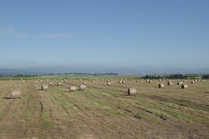 牧草ロールが並ぶ草原と飛行場の写真素材 [FYI04865767]