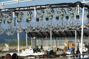 漁船の集魚灯の写真素材 [FYI04865784]