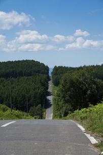 一直線に続く道路の写真素材 [FYI04865787]
