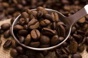 コーヒー豆の写真素材 [FYI04865856]