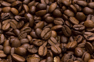 コーヒー豆の写真素材 [FYI04865858]