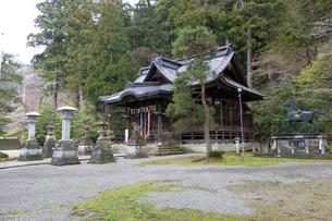 岡太神社拝殿の写真素材 [FYI04865939]