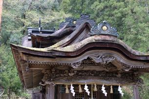 大瀧神社社殿の屋根の写真素材 [FYI04865977]