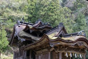 大瀧神社社殿の屋根の写真素材 [FYI04865978]