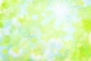 ボケた緑の背景イメージの写真素材 [FYI04865990]