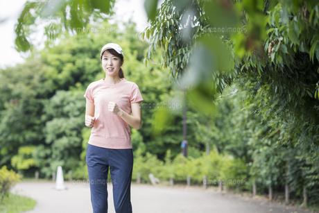 公園で運動する女性の写真素材 [FYI04866155]