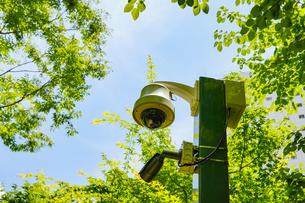 公園の防犯カメラの写真素材 [FYI04866232]