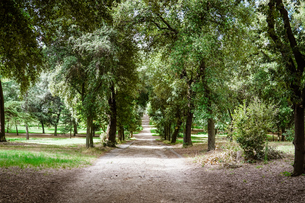 ローマのボルゲーゼ公園、「人形の噴水」に至る「人形の並木道」の写真素材 [FYI04866302]