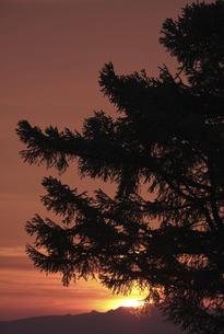 日の出の風景の写真素材 [FYI04867196]