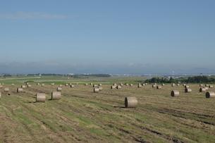 牧草ロールが並ぶ草原と飛行場の写真素材 [FYI04867422]