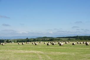 牧草ロールが並ぶ草原と青空の写真素材 [FYI04867424]